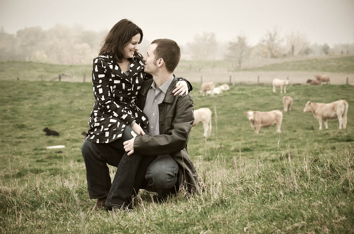 Couple kissing in farm field with cows and barn behind them at Omemee engagement session