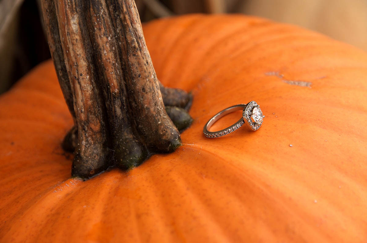 Engagement ring on pumpkin blue mountain village photographer collingwood photographer blue mountain engagement fall