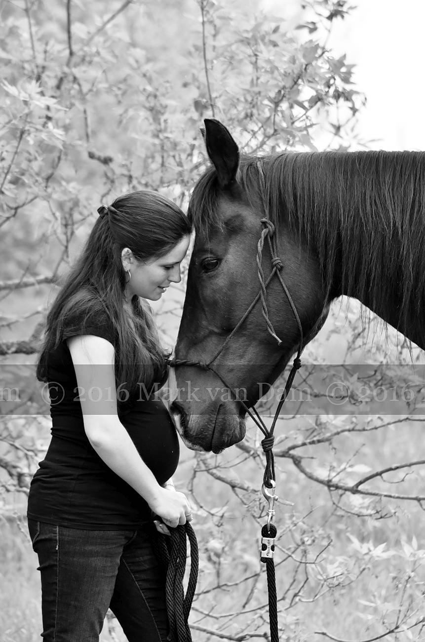 beautiful young pregnant mother with her horse