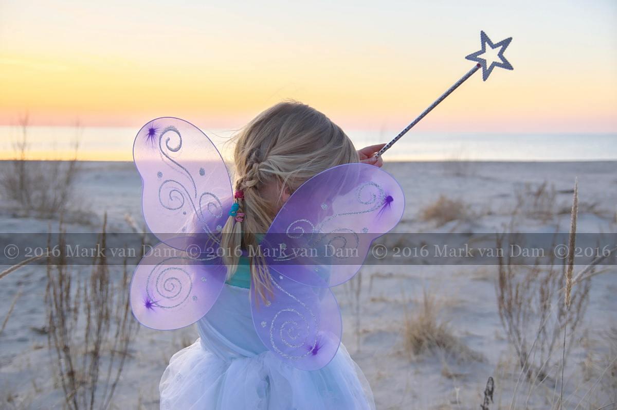 magical fairy portraits 20