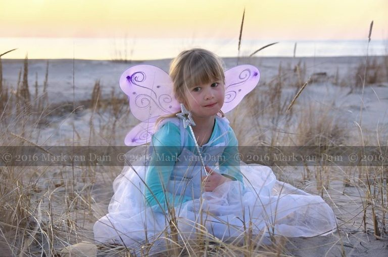 magical fairy portraits 22