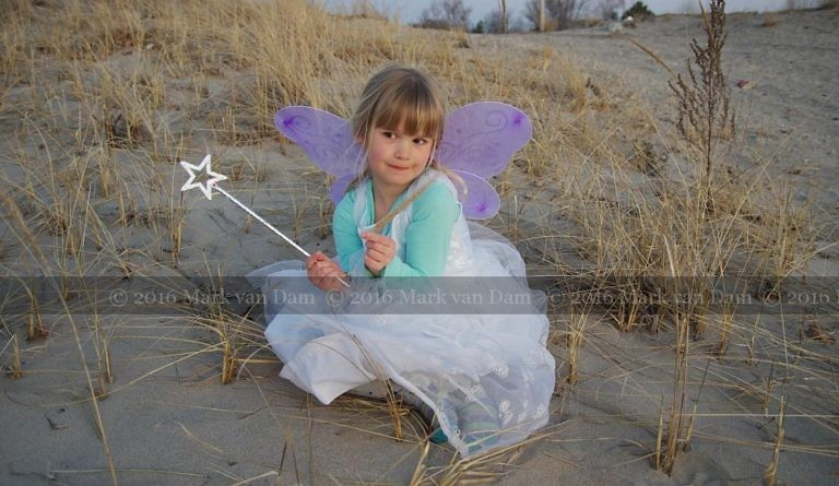 magical fairy portraits 23