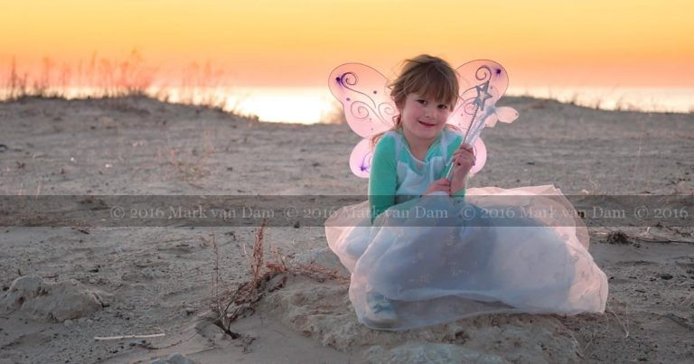 magical fairy portraits 24