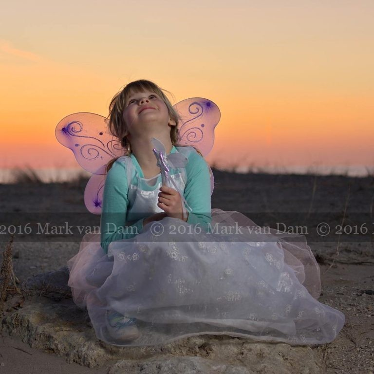 magical fairy portraits 25