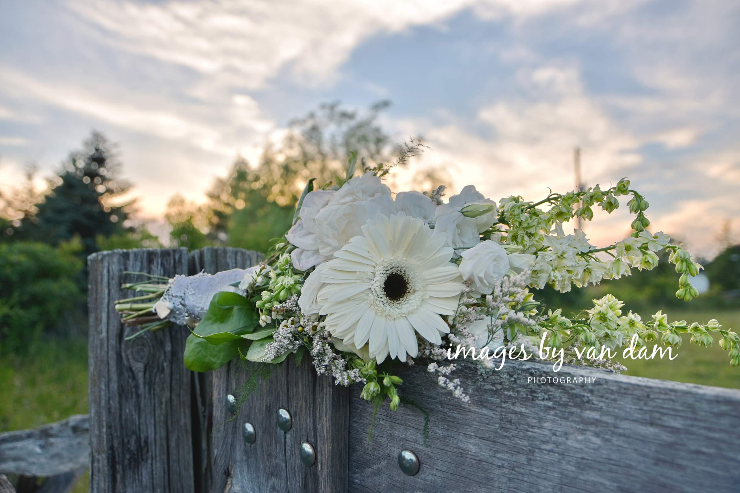 Wedding Bouquet on Split Rail Fence