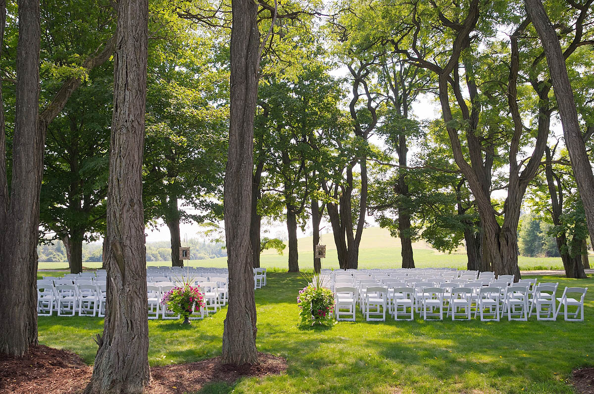 Omemee wedding ceremony location with chairs beneath giant maples on farm