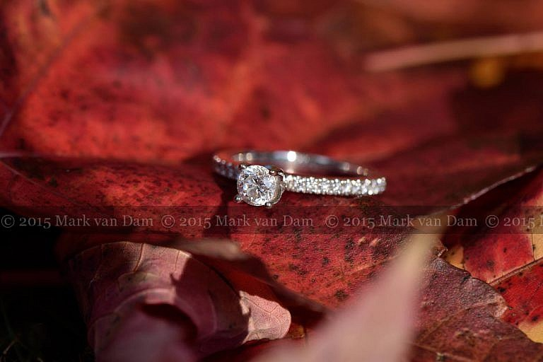 engagement ring on red maple leaf
