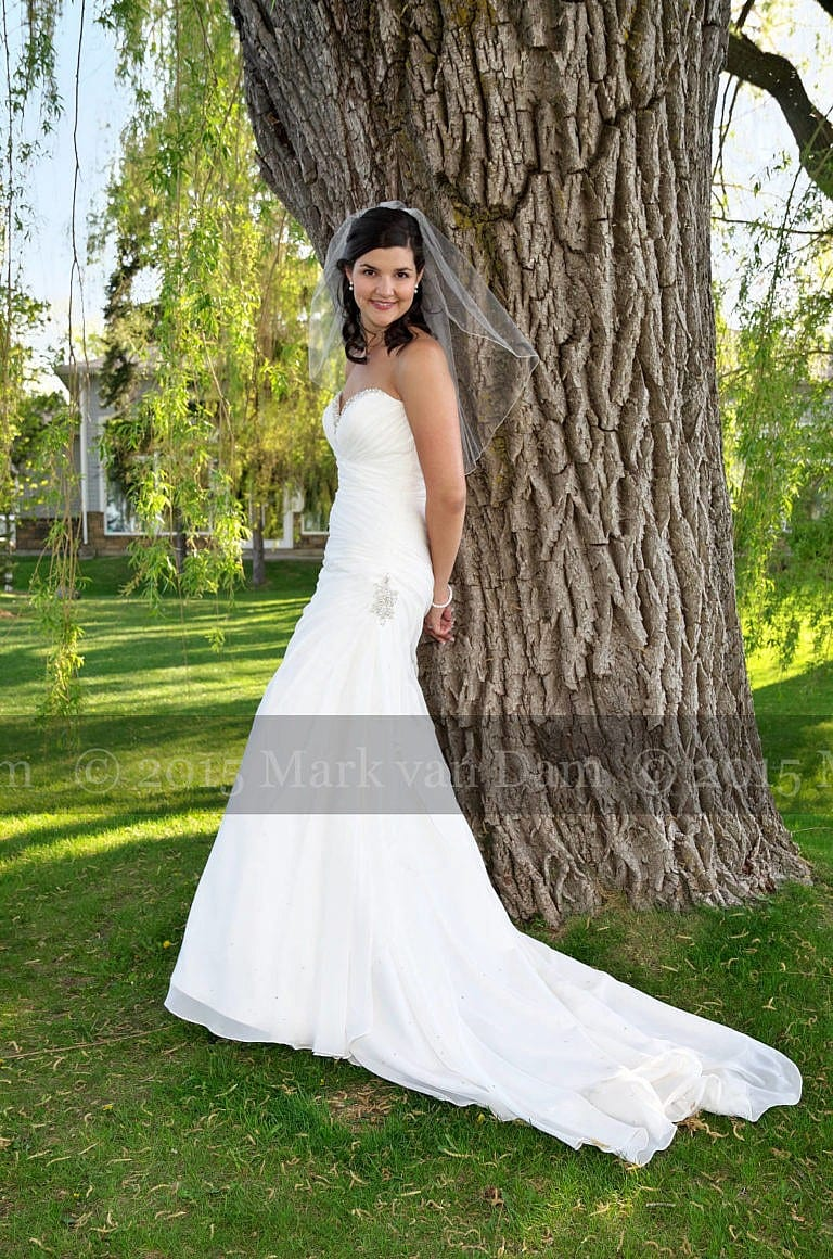 Beautiful bride leaning against a willow tree at Living Waters Resort at The Bear Estate at Cranberry Resort