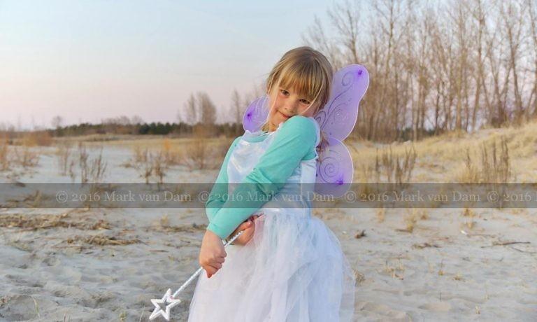 magical fairy portraits 17