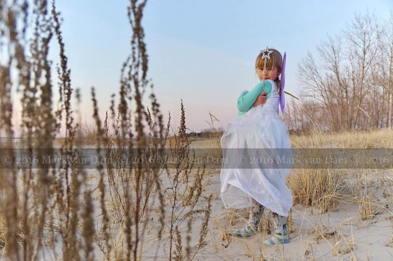 magical fairy portraits 18