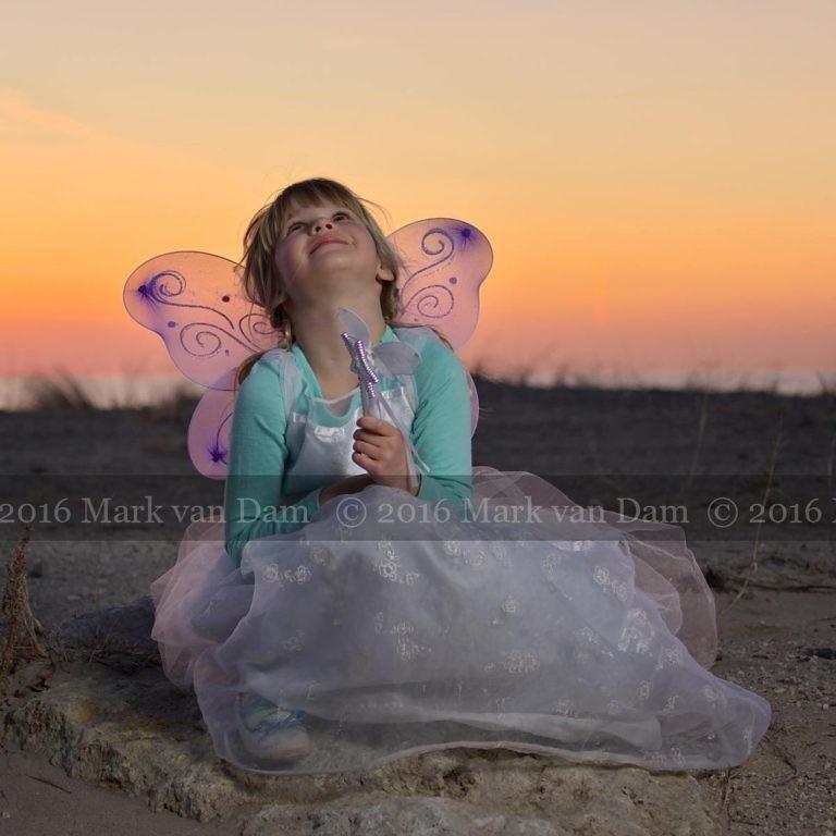 magical fairy portraits 25