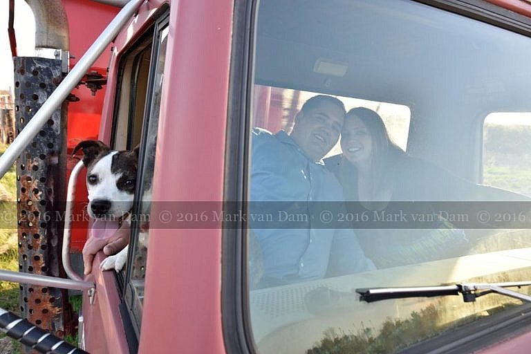 happy dog leans out side of truck with owners inside in background