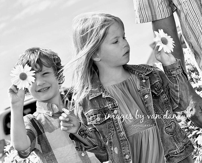 Young ones admire their carefully chosen daisies collingwood family portraits shipyards portraits collingwood photographer
